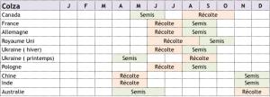 calendrier-cultures-colza